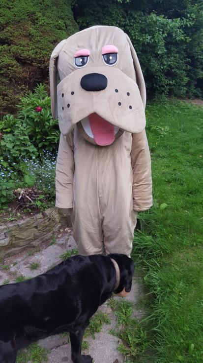 Rags and Berts Dog Costumes