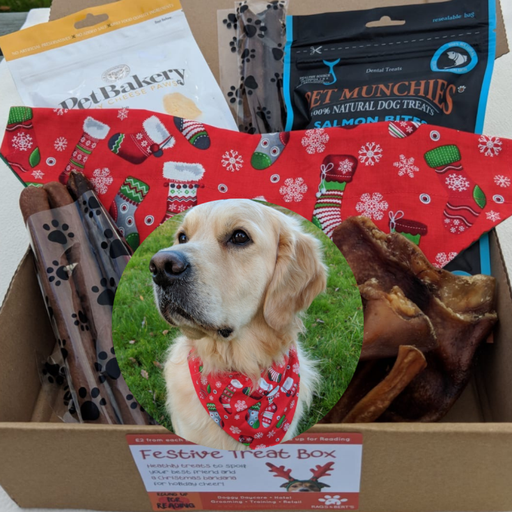 Christmas treat box for large dogs